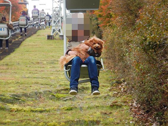 リフトに犬を抱っこして乗る