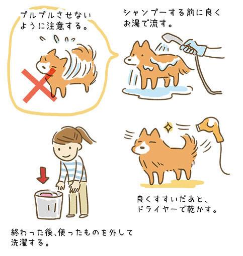 新型コロナウィルスに感染した人のペットを預かる時3