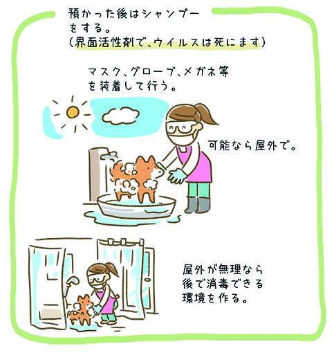 新型コロナウィルスに感染した人のペットを預かる時2