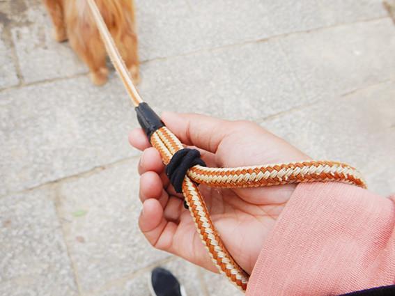 犬のリードすっぽ抜け防止