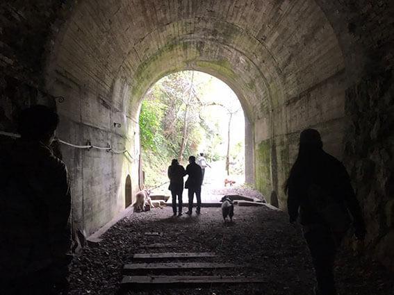 トンネルをくぐる人と犬