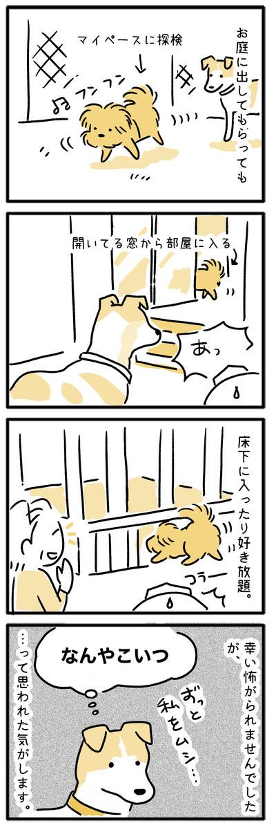犬のマンガ