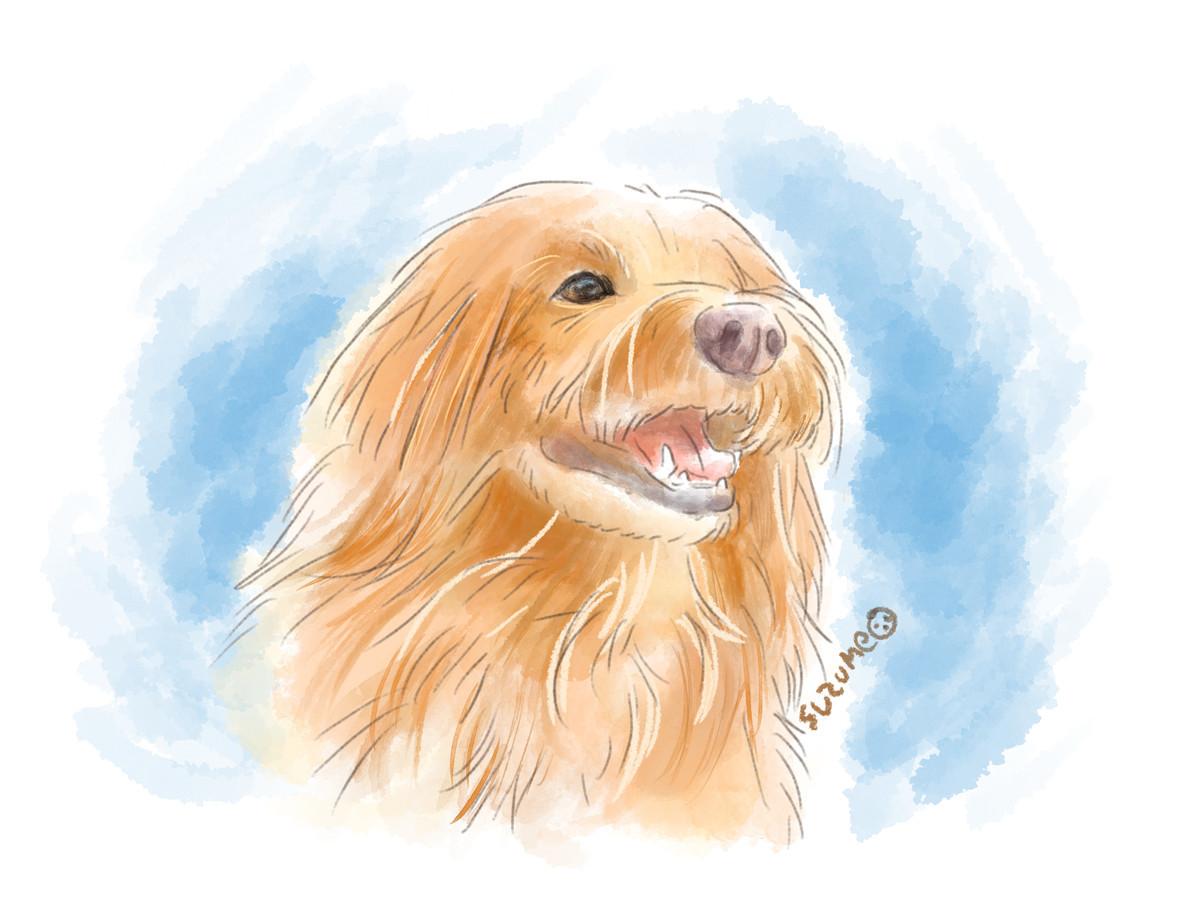 犬の水彩イラスト