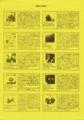 1988年2月20日 PH CLUB(パラレルハウス / NEW COLLECTION) - p.3