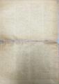 40068年6月20日(発行日)『部族 / THE TRIBE』vol.2, no.2(p.14)