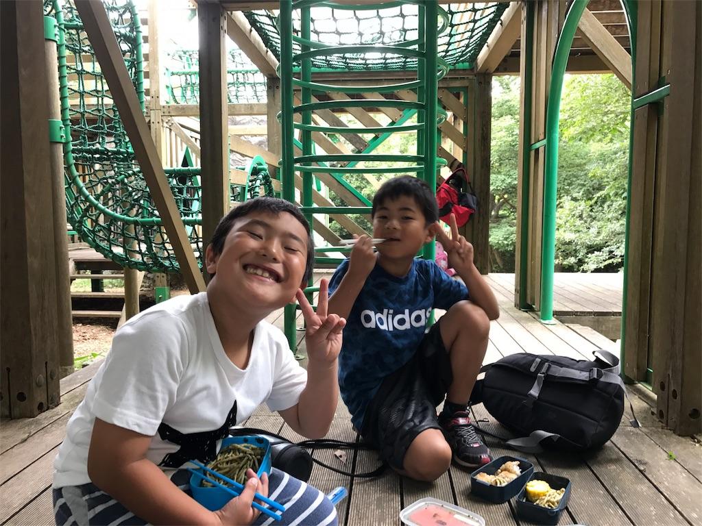 f:id:chairukanomori:20170618231139j:image