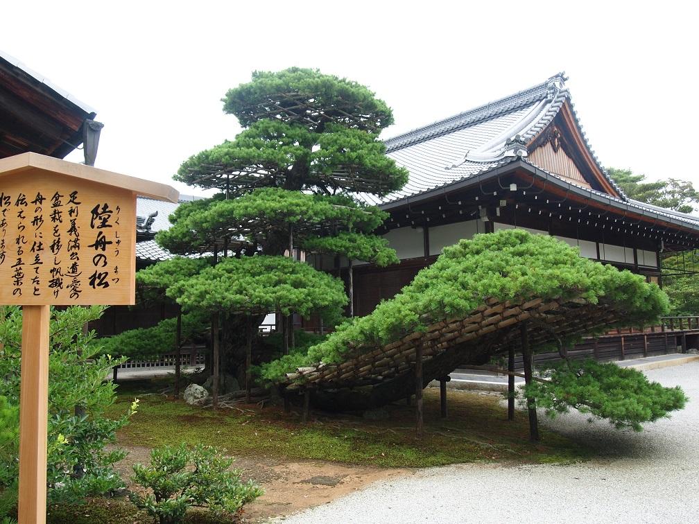 f:id:chakasawa:20200411134642j:plain