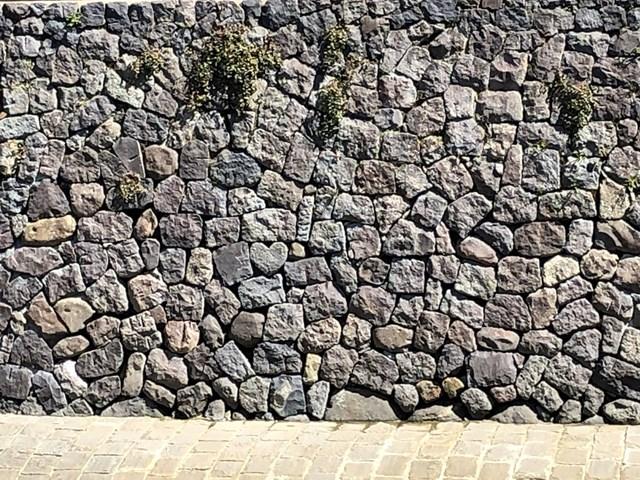 f:id:chakasawa:20200418113347j:plain