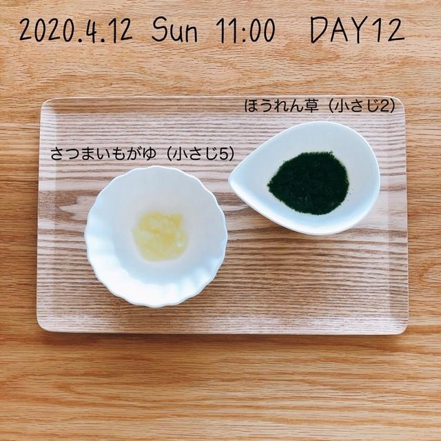 f:id:chakasawa:20200418205415j:plain