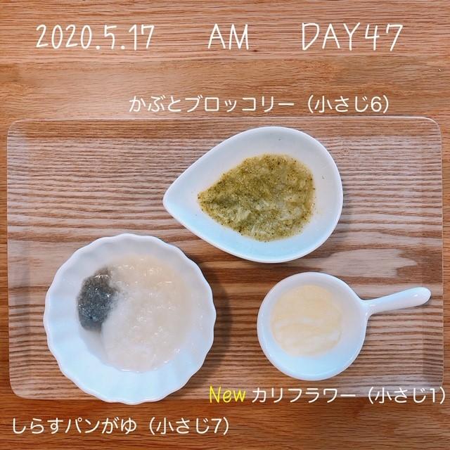 f:id:chakasawa:20200518092009j:plain
