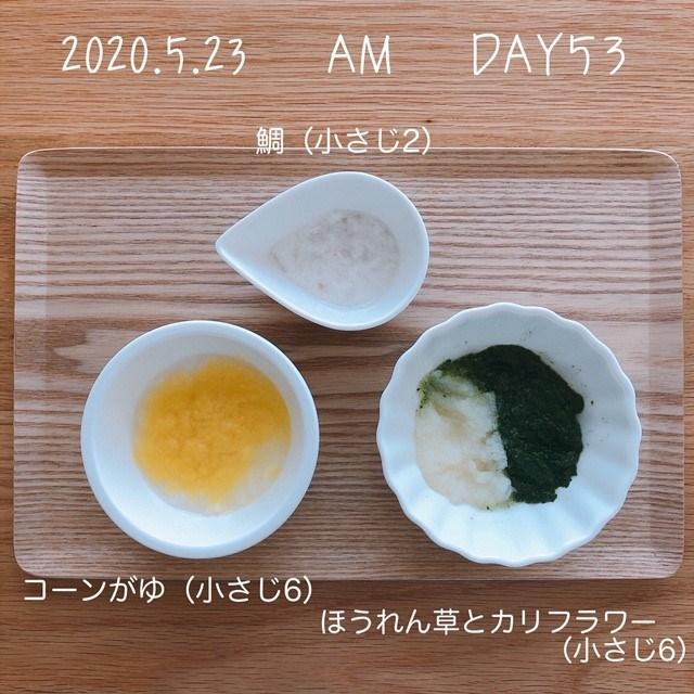 f:id:chakasawa:20200525092139j:plain