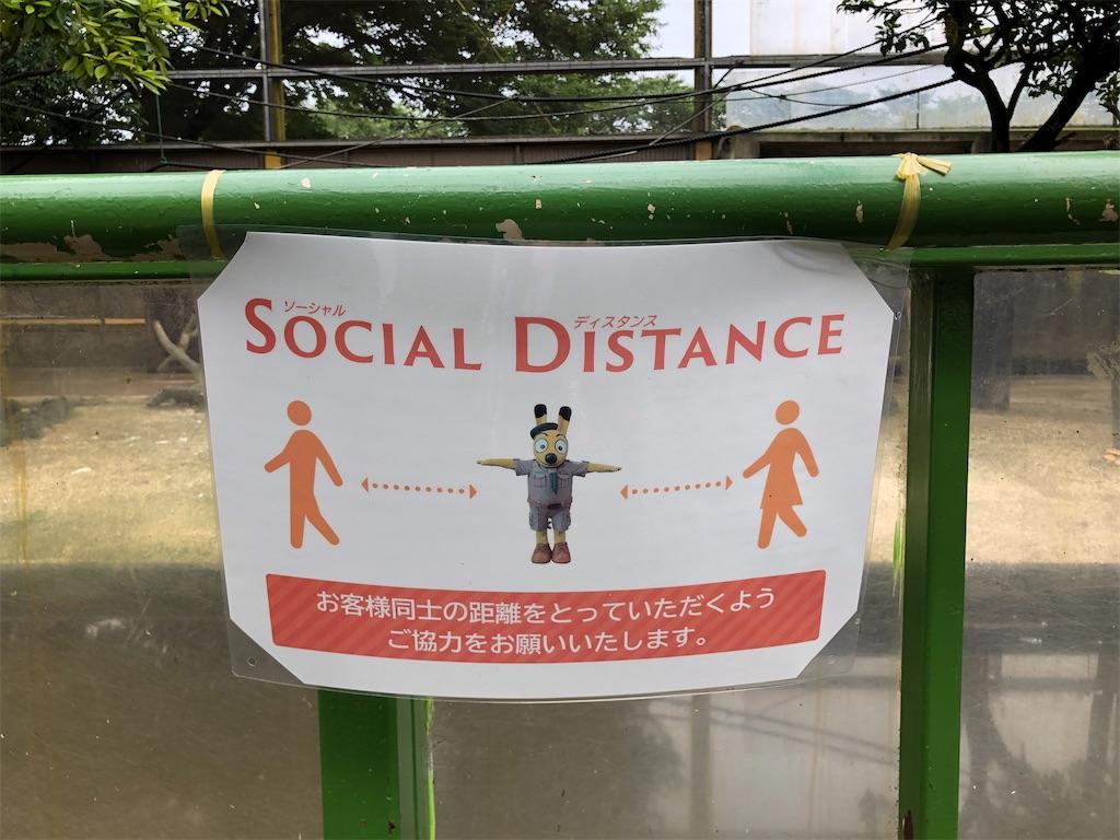 f:id:chakasawa:20200726130138j:image