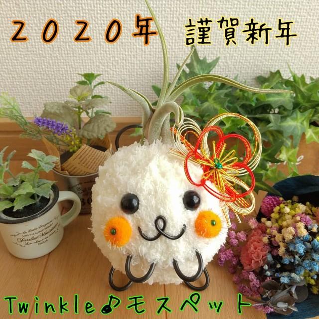 f:id:chakuchumi0701:20200101113146j:image