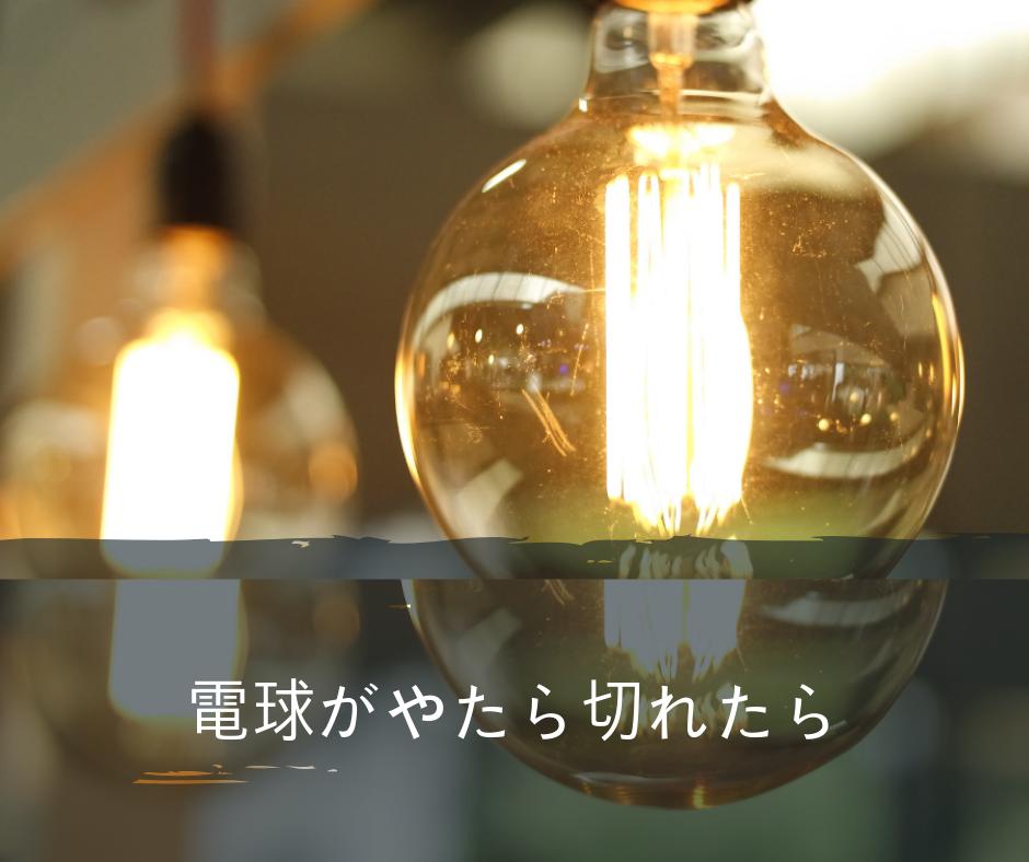f:id:chakuma2017:20190125115106p:plain