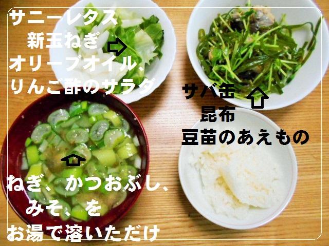 f:id:chakuma2017:20190406121837j:plain