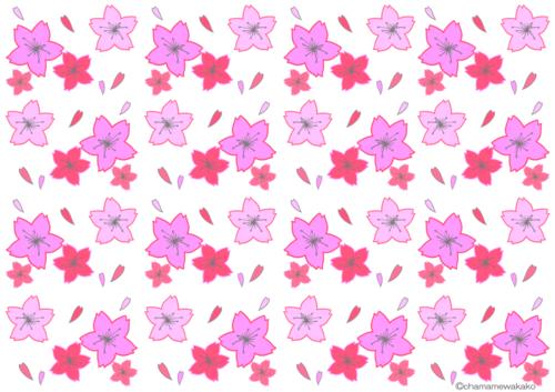桜(白)大.png