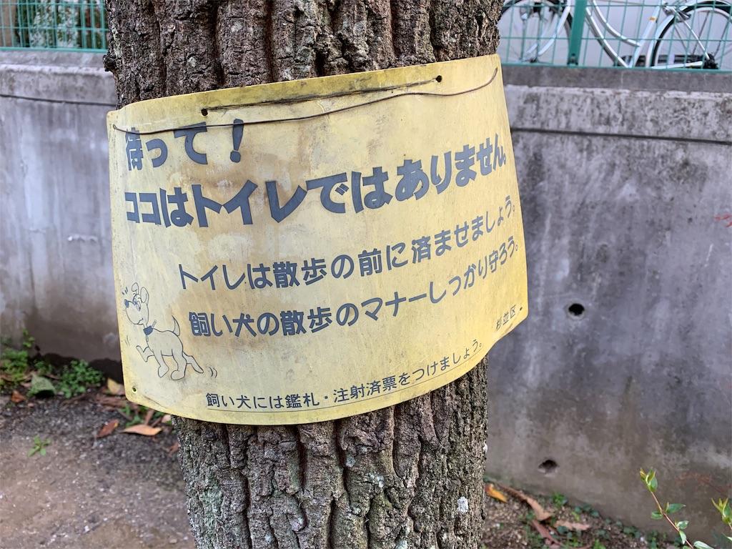 f:id:chan-kokokara:20190424121835j:image