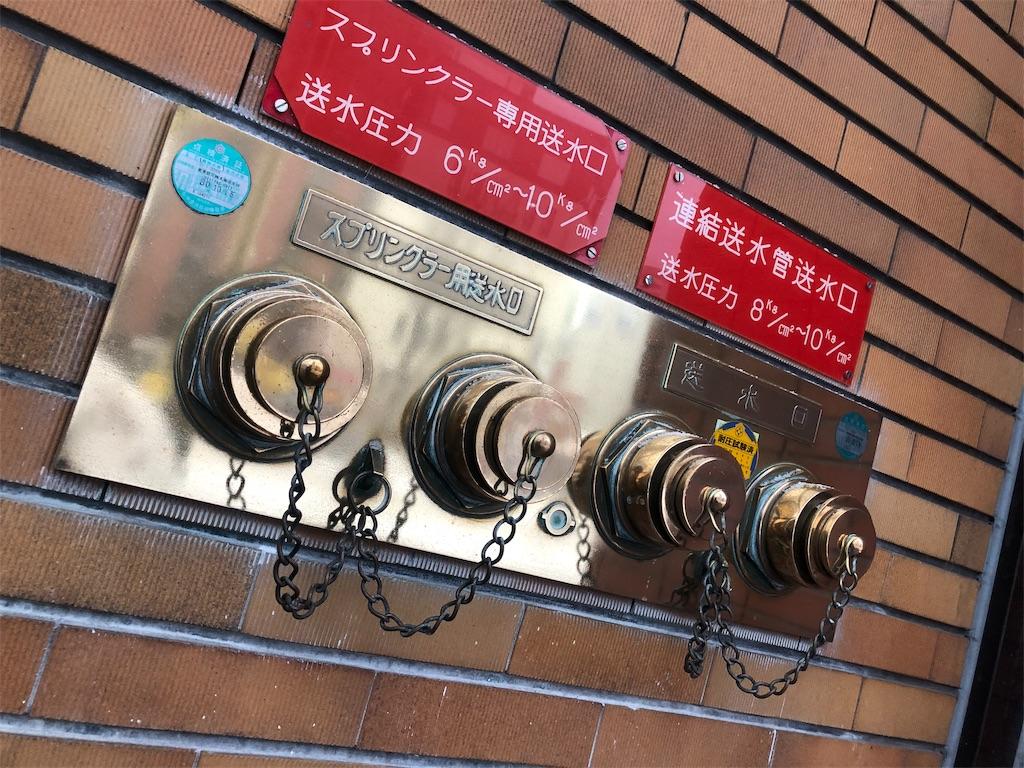 f:id:chan-saka:20190122184519j:image