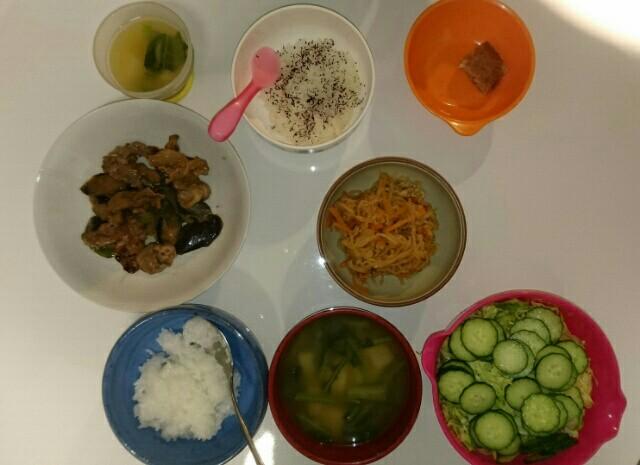 16日目夕食