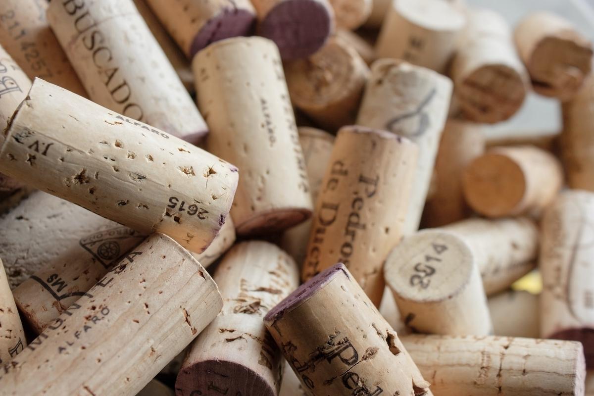 自然派ワインとは?|theDANN media