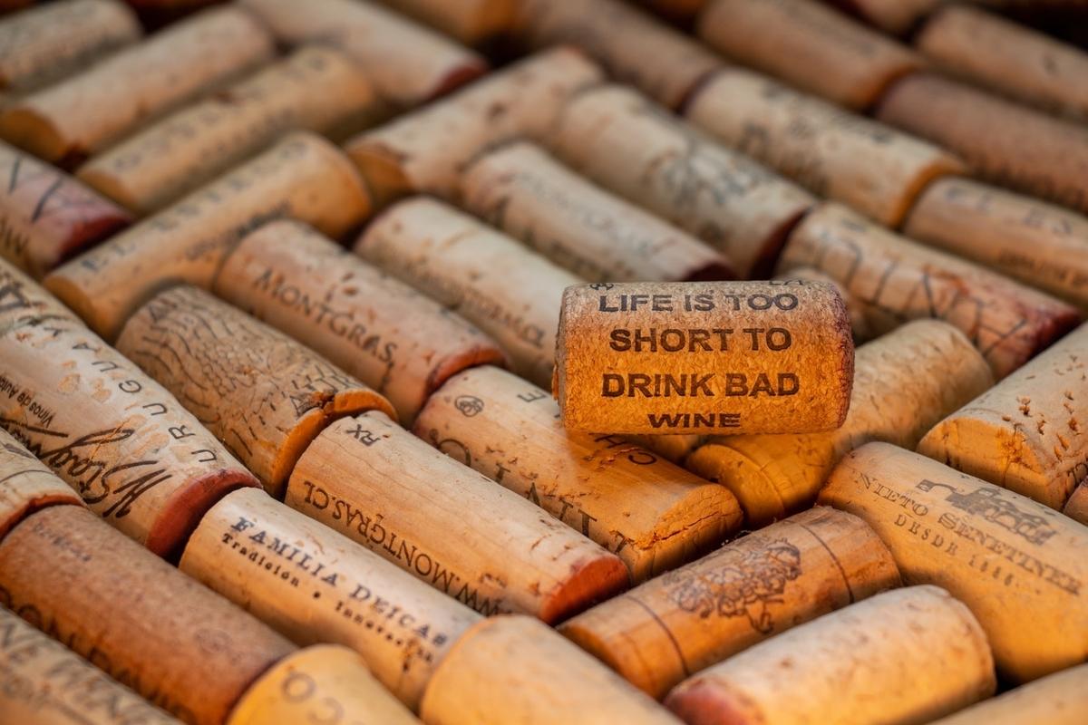 チャコリのワインを徹底解説!味わいや香り、産地などをご紹介|theDANN media
