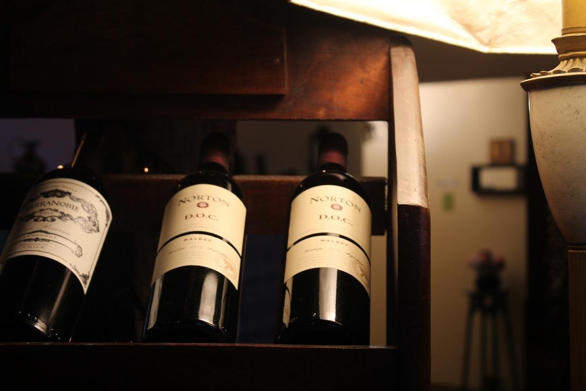 チリワインの歴史を解説!気になる味わいや香りは?|theDANN media