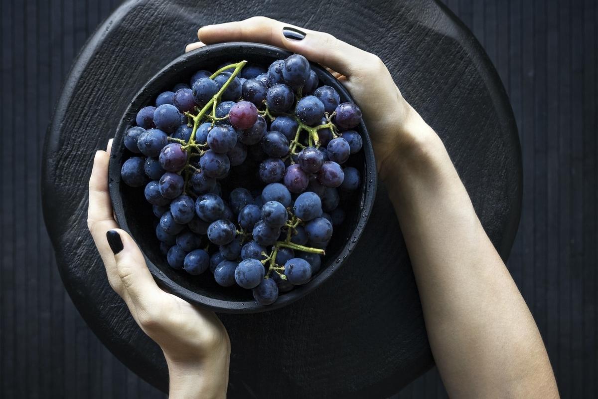 オーガニックワインを徹底解説!有機栽培ブドウは安心?|theDANN media