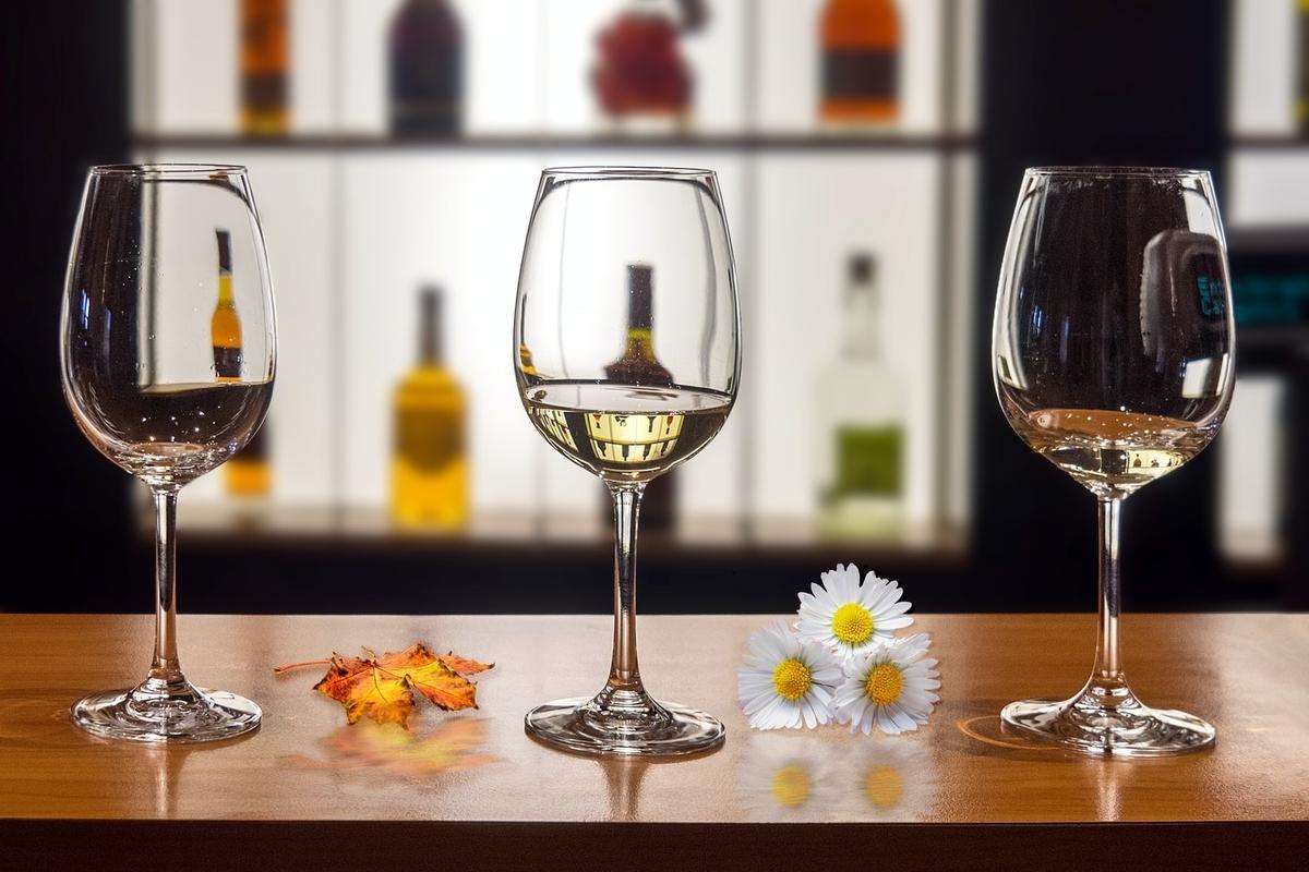 ワインについて徹底解説!味わい、産地、赤ワインと白ワインの違いとは?|theDANN media