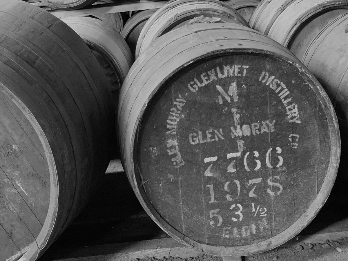 白ワインの造り方|theDANN media