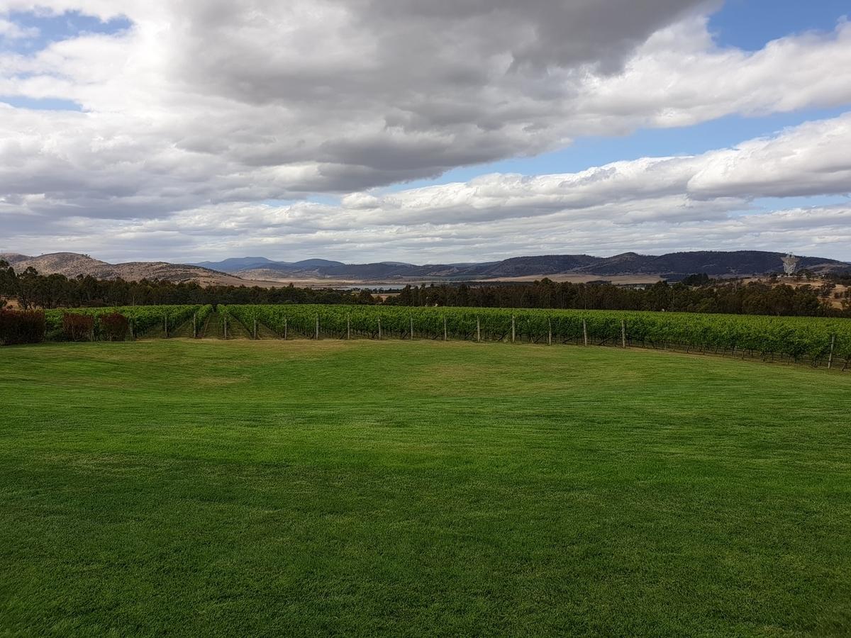 美味しい白ワインの産地|theDANN media