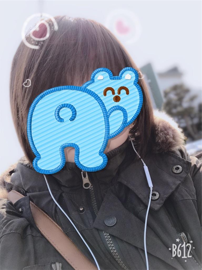 f:id:chanko_bamboo:20190304113717j:image