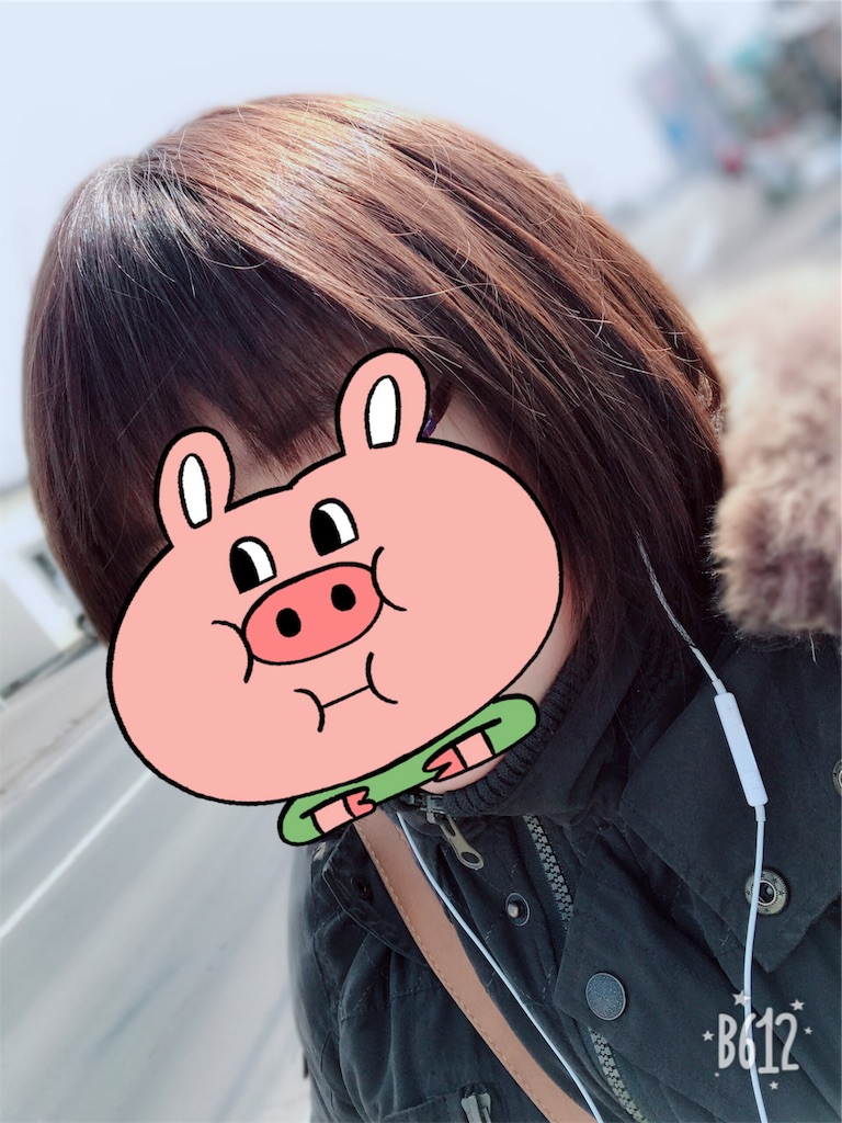 f:id:chanko_bamboo:20190304113721j:image