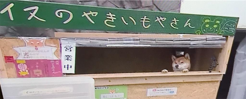 f:id:chanko_bamboo:20190321074048j:image