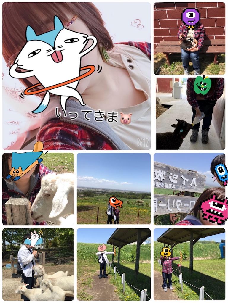 f:id:chanko_bamboo:20190522203055j:image