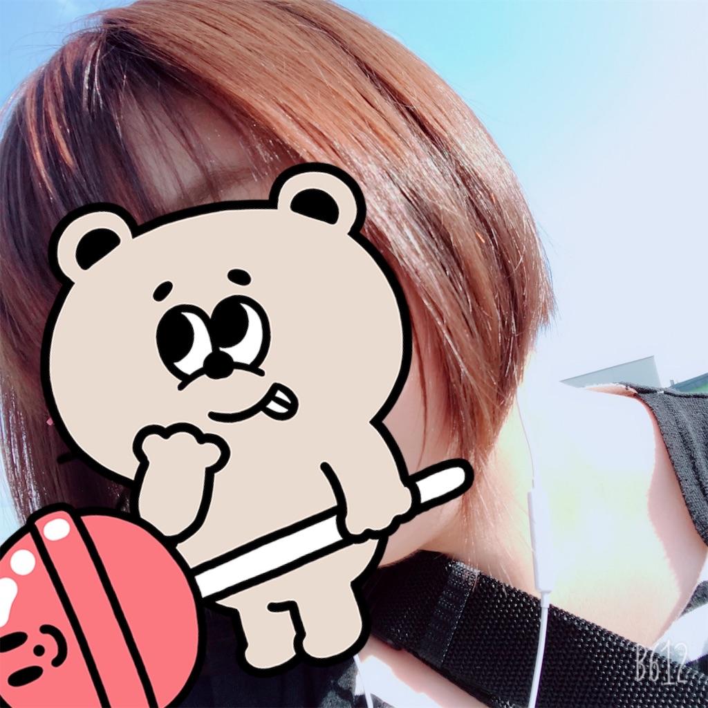 f:id:chanko_bamboo:20190818144734j:image