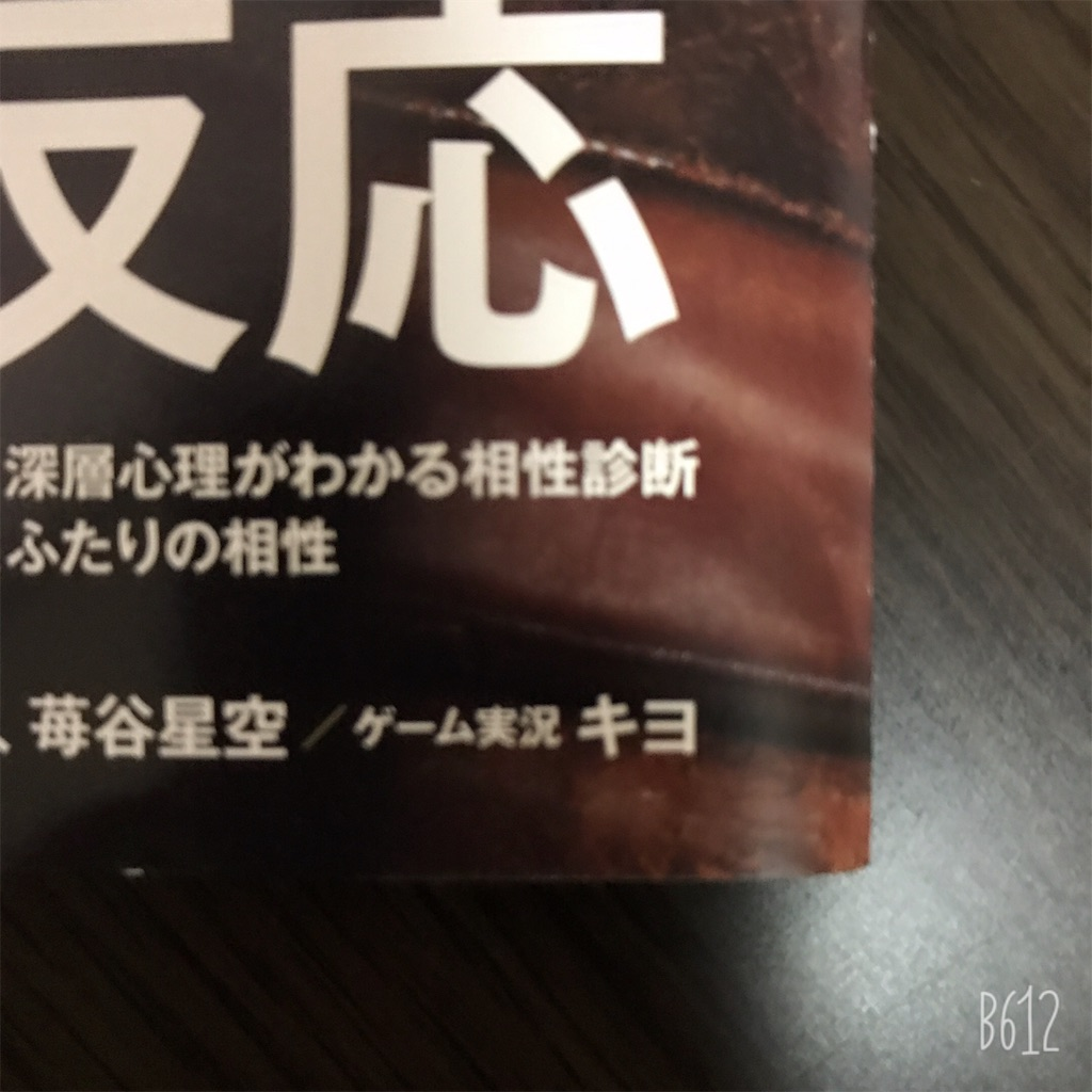 f:id:chanko_bamboo:20190828204604j:image