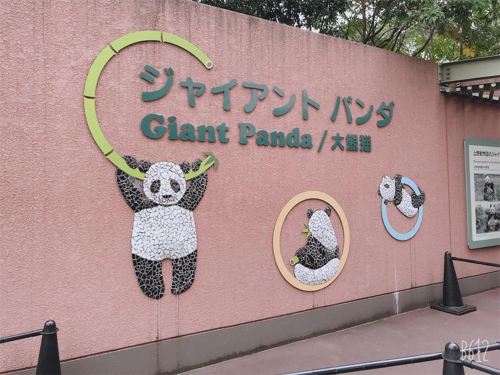 f:id:chanko_bamboo:20191020121213j:image