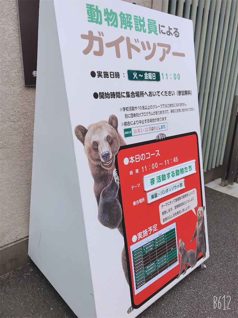 f:id:chanko_bamboo:20191020123335j:image