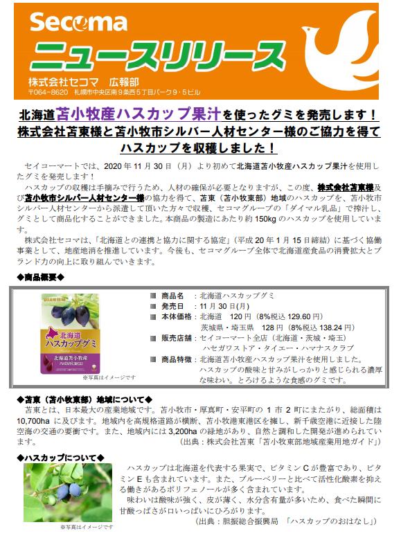 f:id:chanko_bamboo:20201130142245p:plain