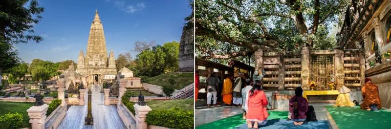 仏教が生まれた地ブッダガヤ―にある寺院と菩提樹