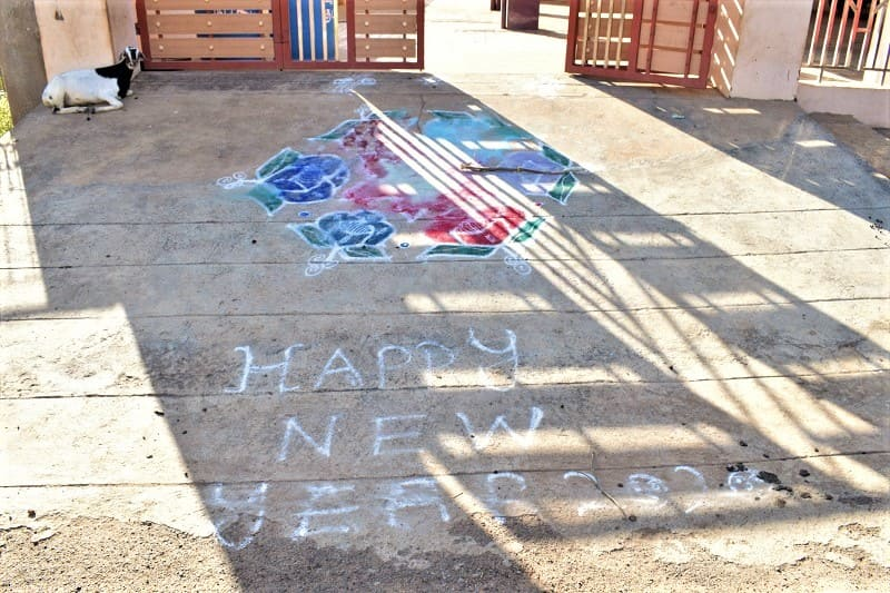 (12) 2020年新年のランゴリ(カラフル)