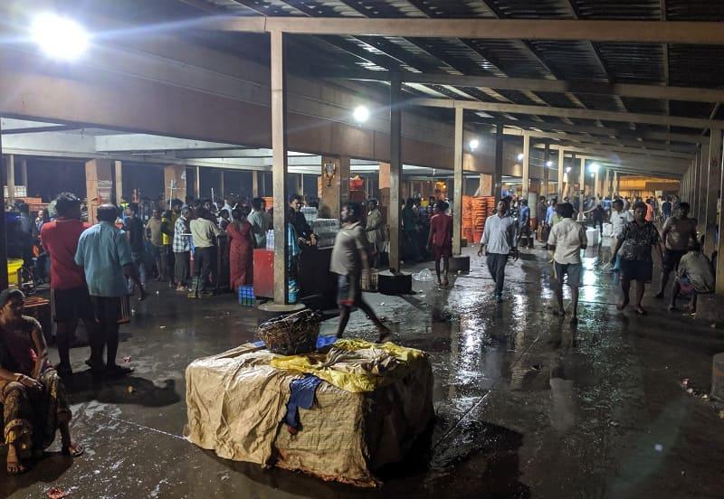 朝5時のムンバイのフィッシュマーケットの様子