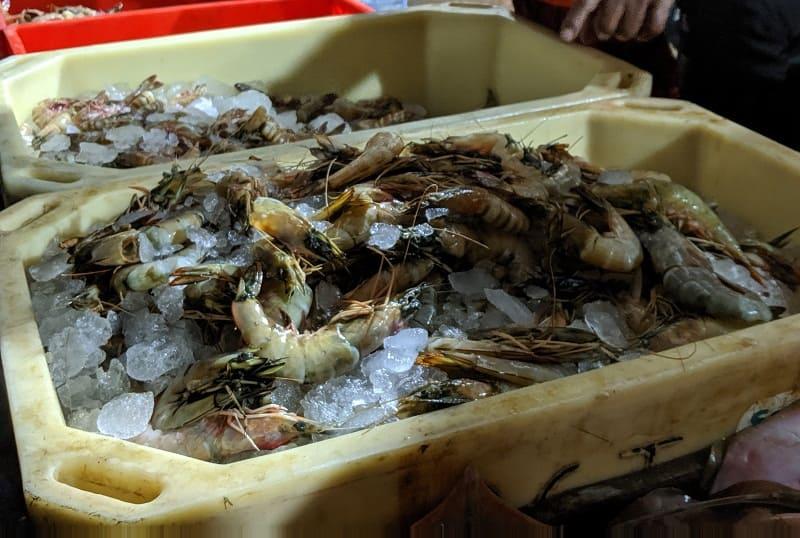 インド・ムンバイのフィッシュマーケットで売られていた新鮮なエビ