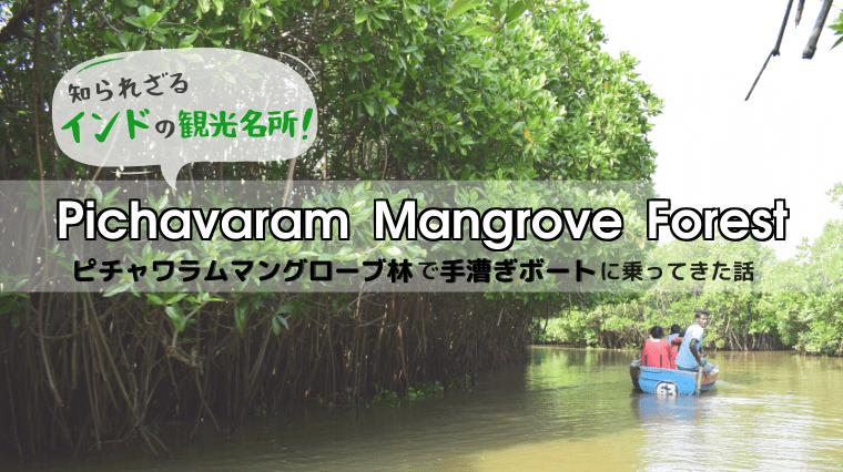 タイトル画像(世界最大級のマングローブ林!インドのピチャワラムマングローブ林で手漕ぎボートに乗ってきた)