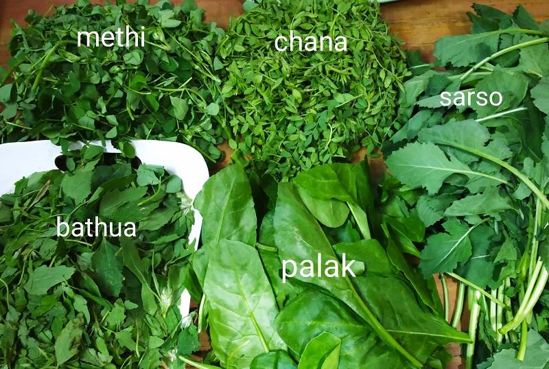 インドの青菜(Saag)の種類
