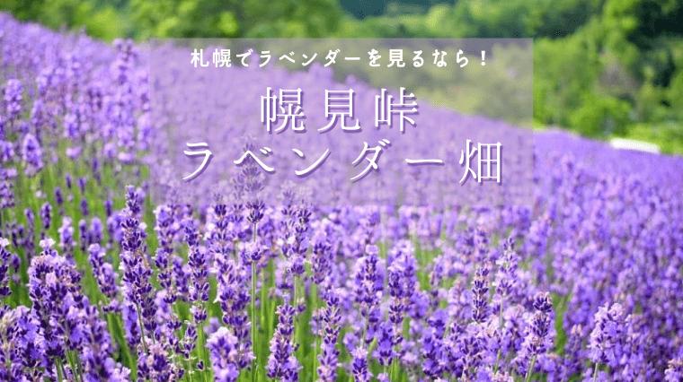 タイトル画像(富良野まで行かなくてもOK!札幌でラベンダー畑を楽しんできた!(幌見峠))