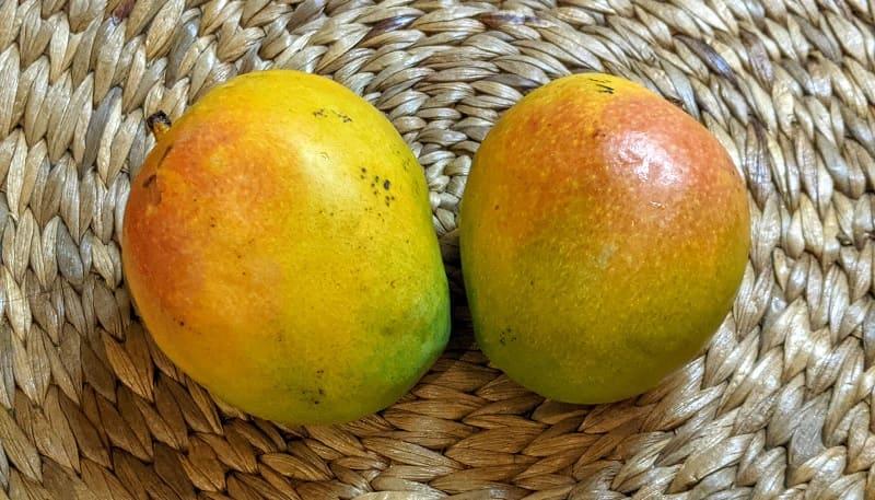 Laal baag Mango (ラールバーグ)