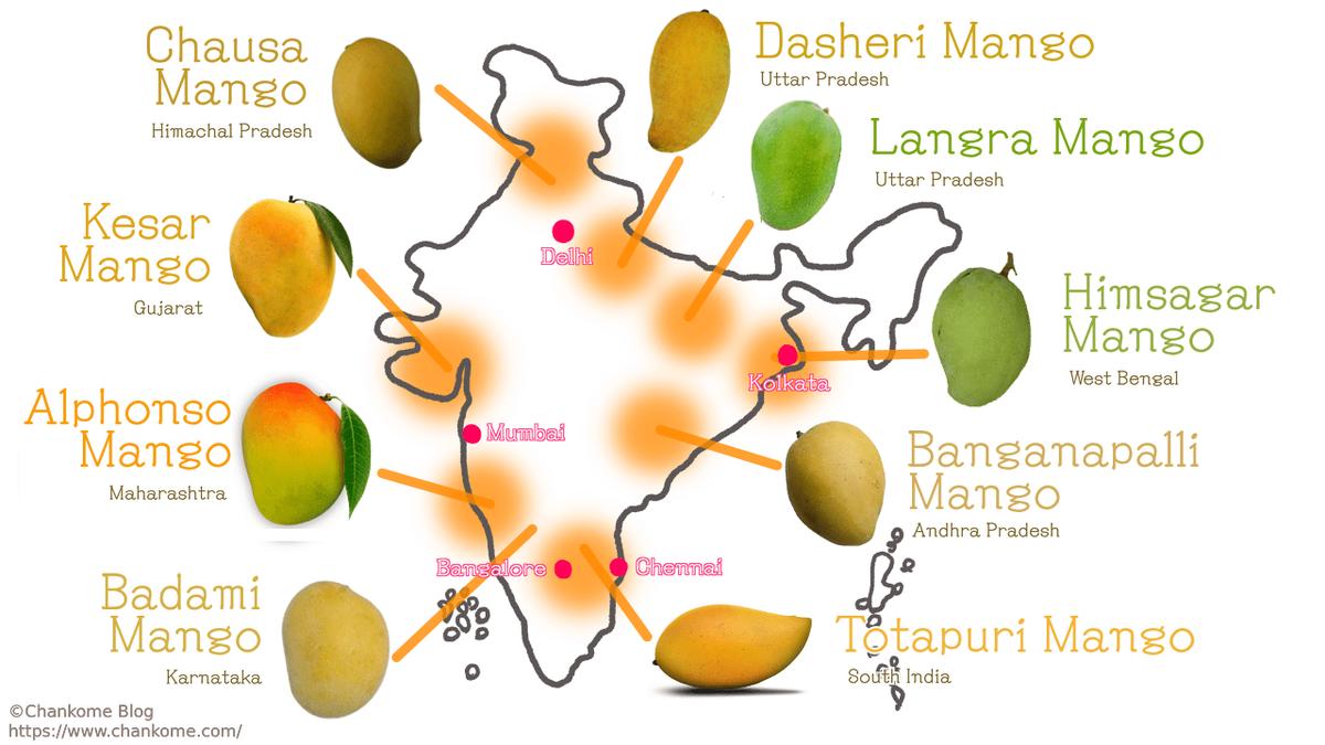 地域別インドマンゴー
