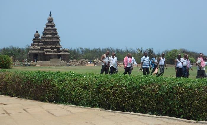 海岸寺院と防風林