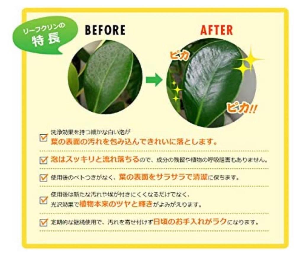 f:id:chankotochan:20210514091047j:image